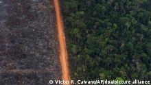 Blick auf ein Waldgebiet, in dem der linke Teil des Waldes durch Waldbrände komplett zerstört wurde. In Südamerika wüten derzeit schwere Waldbrände. Vor allem Brasilien, Venezuela, Bolivien und Kolumbien sind von den Feuern betroffen. +++ dpa-Bildfunk +++