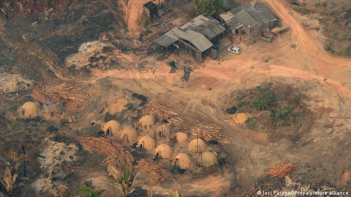 Umwelt I Regenwald Brasilien