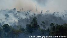 Rauch steigt aus dem Regenwald im Amazonas bei einem Brand. In Brasilien wüten die schwersten Waldbrände seit Jahren. Seit Januar stieg die Zahl der Feuer und Brandrodungen im größten Land Südamerikas im Vergleich zum Vorjahreszeitraum nach den jüngsten Angaben der brasilianischen Weltraumagentur INPE um 78 Prozent auf mehr als 80 000 Brände. Betroffen waren meist Flächen in Privatbesitz, aber auch in Naturschutzgebieten und Ländereien der indigenen Bevölkerung brechen immer wieder Feuer aus. +++ dpa-Bildfunk +++