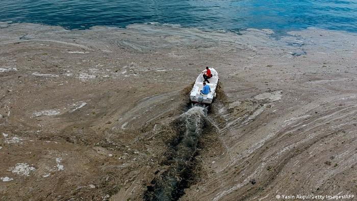 Mramorno more kod Istanbula prekriveno je ogranskim sluzavim slojem na površini, pogotovo blizu obale. Želatinasta masa je oaza za viruse i bakterije, i preti čitavoj flori i fauni. Pojava morskih slina nije nova, ali poslednjih godina uzima maha i naučnici još nisu našli rešenje. Kažu, sa globalnim zagrevanjem će u Sredozemlju sve veći deo mora izgledati ovako.