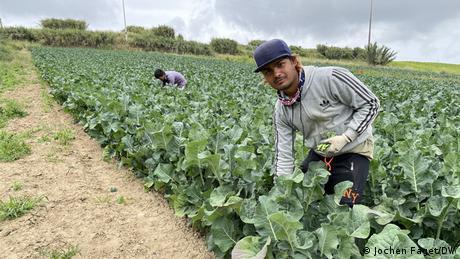 Portugal Arbeitssklaven | Ranjan Dahl