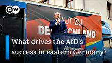 Deutschland AfD