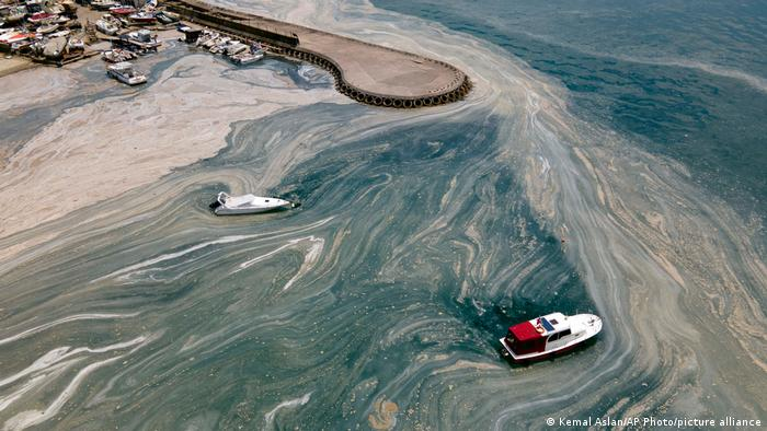 BdTD Türkei Meeresschleim im Marmarameer