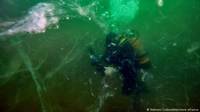A diver is seen with sea saliva (mucilage) under water