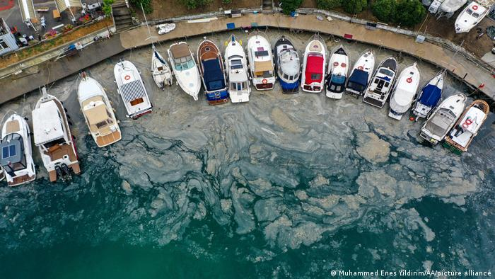 A drone photo shows an aerial view of mucilage known as sea saliva covering the surface of sea in some regions of Anatolian side in Istanbul