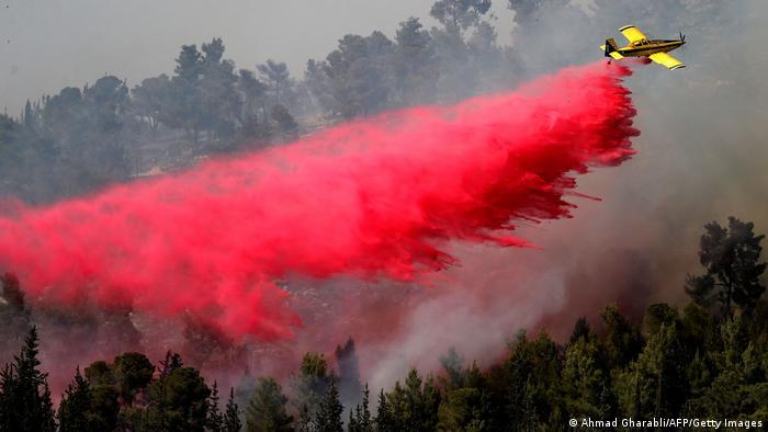 Горски пожари вилняха през юни и в Израел
