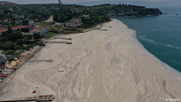 Aerial view of a deserted beach and sea snot in Istanbul