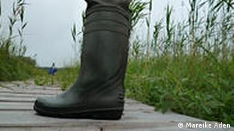 A rubber boot with a Belarusian marsh in the background