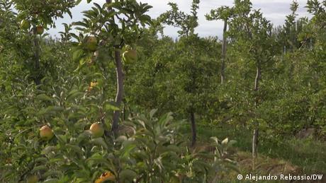 Videostill Sendung | Economia latinoamerica |Keine Äpfel mit Fracking