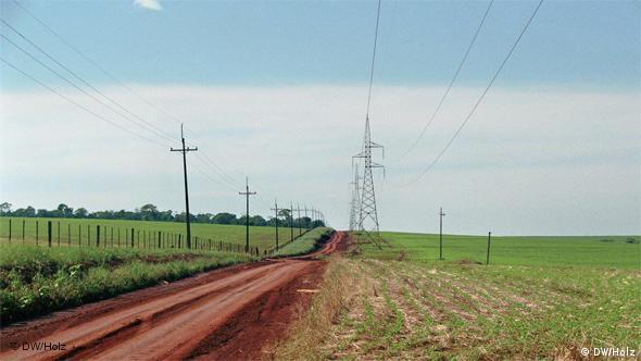 Monocultivos de soja en Paraguay, hasta donde la vista alcanza.