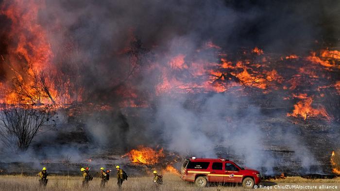 Пожарные пытаются взять под контроль лесной пожар в Калифорнии