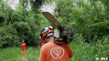 Videostill | Projekt Zukunft | Toilettenpapier aus Tropenholz