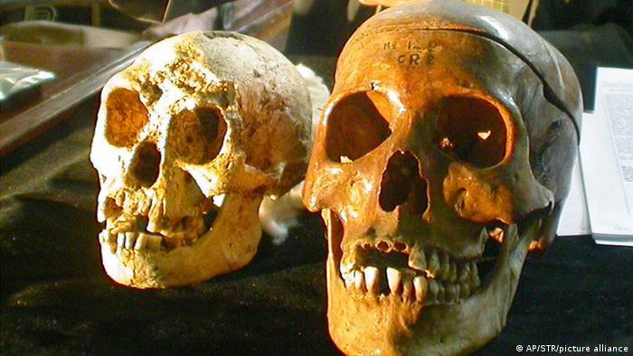 Hobbit, también conocida como Flo, recibió su nombre originalmente por el lugar donde fue encontrada, la isla indonesia de Flores. Los restos de esta dama de la especie Homo floresiensis tienen 18.000 años. Flo tenía unos 30 años y medía sólo 1,5 metros. Su apodo de fantasía se debe al auge de El señor de los anillos, que estaba en su apogeo en el momento de su descubrimiento en 2004.