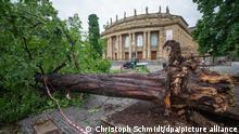 Ein umgestürzter Baum liegt vor dem Opernhaus. Ein starkes Unwetter war über weite Teile Baden-Württembergs hinweggezogen und hatte dabei große Schäden angerichtet. +++ dpa-Bildfunk +++