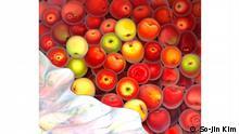 Äpfel, von So-Jin Kim Ausstellung Inventing nature. Pflanzen in der Kunst in der Staatlichen Kunsthalle Karsruhe ©So-Jin Kim