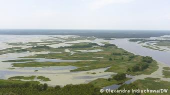 пойма реки на украинско-белорусской границе