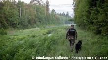 10.06.2021 Ein Mitglied des litauischen Grenzschutzes patrouilliert mit einem Hund an der Grenze zu Belarus. Litauen hat neun irakische Asylbewerber festgenommen, die aus Belarus eingereist waren. Litauische Beamte werfen ihrem Nachbarland vor, wiederholt Gruppen von Einwanderern nach Litauen zu schicken. +++ dpa-Bildfunk +++