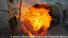 6307321 13.08.2020 In this handout photo released by the Aerial Forest Protection Service, a view shows flames and smoke from a forest fire at the unknown location in the Republic of Sakha (Yakutia), Russia. Editorial use only, no archive, no commercial use. Aerial Forest Protection Service
