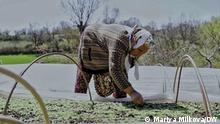 Frau in den bulgarischen Rhodopen bei der Feldarbeit DW, Mariya Milkova