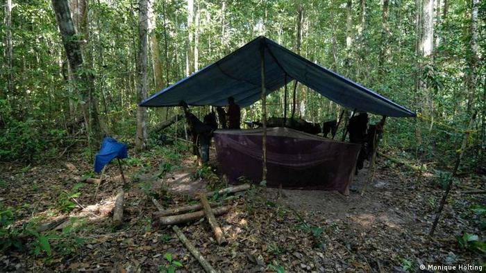 Humilde alojamiento en el bosque de Iwokrama, en el Escudo Guayanés, donde los investigadores pasaron cerca de dos semanas haciendo trabajo de campo.