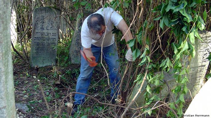 Волонтер під час розчищення хащів на єврейському цвинтарі у Чернівцях, 2013 рік