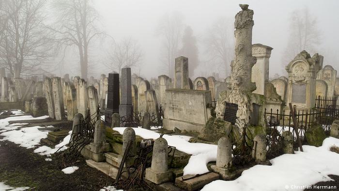 Єврейський цвинтар Чернівців після кількох років роботи волонтерів, які розчищали занедбану територію від хащів