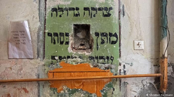Відновлення синагоги у Львові