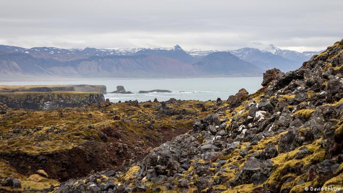 Iceland | The lava field between Hellnar and Arnarstapi