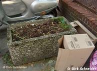 شهروندان هامبورگ برای زیباتر کردن چهره شهر در هر جا که کمی خاک وجود داشته باشد گیاه میکارند