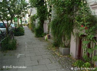 http://www.dw-world.de/image/0,,5821184_4,00.jpg