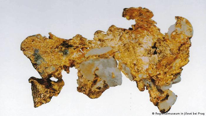Zlatý vzorek s kamenem v Jilovském regionálním muzeu