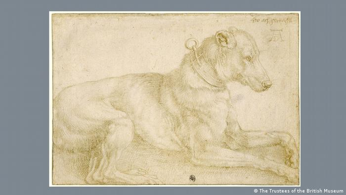 This graphic of a dog, drawn with pale lines, is impressively lifelike. It is lying on the floor and wearing a collar