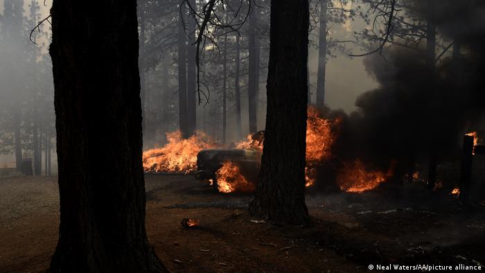 Firefighters provide active structure protection along Frenchman Blvd in the Plumas National Forest in Doyle, California, United States on July 12, 2021
