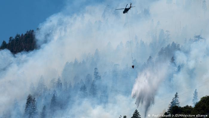 USA | Waldbrände in Kalifornien