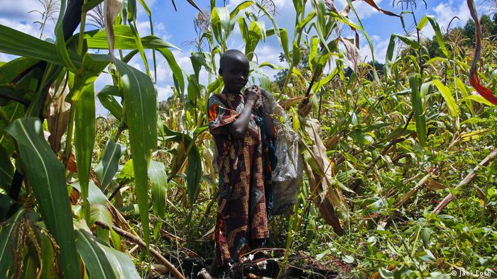Uganda Ölförderung Umwelt Indigene Total