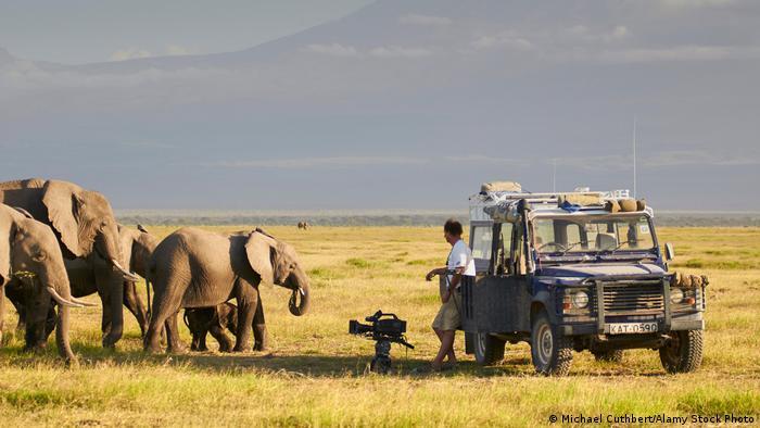 Ein Kameramann lehnt an seinem Jeep und filmt eine Elefantenherde.