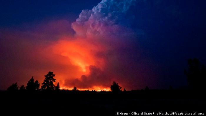 Лісові пожежі в Каліфорнії