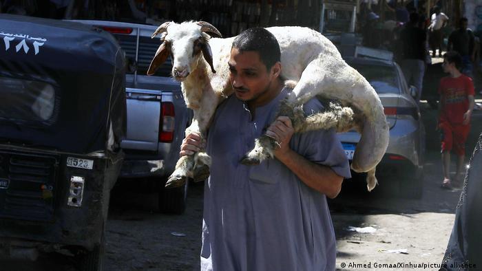 Ägypten, Kairo | Ein Mann kaufte ein Schaf im Vorfeld des Eid al-Adha