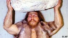 Diese Plastik eines Neandertalers wurde am Montag, 7.Oktober 1996, im neuen Neandertal-Museum bei Mettmann aufgestellt. Insgesamt 12 vorgeschichtliche Menschen, die aus der dermoplastischen Werkstatt von Elisabeth Dayners aus Paris stammen, sind den original Knochenfunden nachempfunden und zaehlen zu den Hoehepunkten der Sammlung. Am Donnerstag wird das Neandertaler-Museum in Mettmann von Bundespraesident Herzog eingeweiht. (AP-PHOTO/Heinz Ducklau)