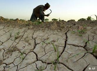 Засуха, крестьянин обрабатывает поле