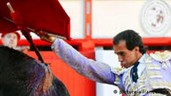 Spanish bullfighter Leandro Marcos performs during a bullfight