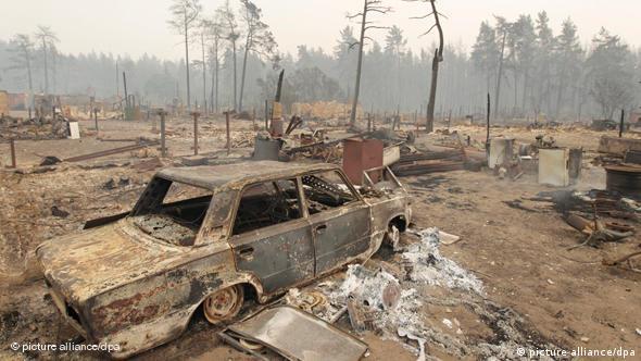Последствия пожаров лета 2010 года (фото из архива)