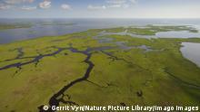 USA Aerial view of salt marsh in the Baratari Bay area of the Mississippi River delta. Plaquemines Parish, Louisiana. July 2010. PUBLICATIONxINxGERxSUIxAUTxONLY 1308691 GerritxVyn