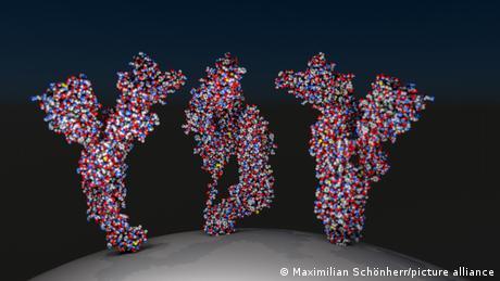 Illustratoin showing three spike proteins from a coronavirus