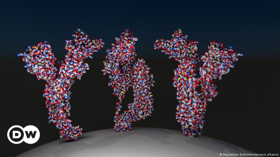 Lösen Antikörper gegen das Enzym ACE2 Long-COVID aus?