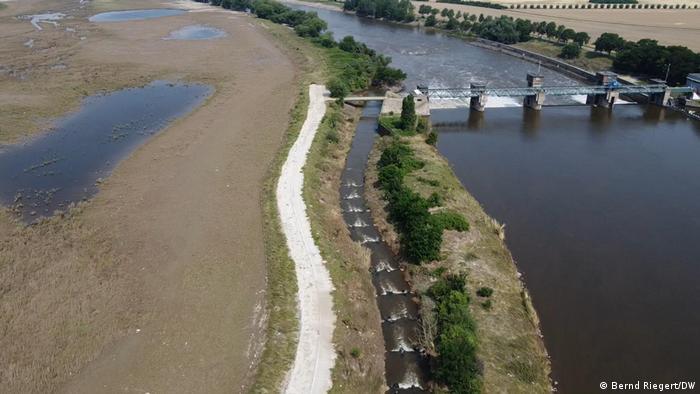 Râul Maas este flancat de lunci, câmpii şi păşuni