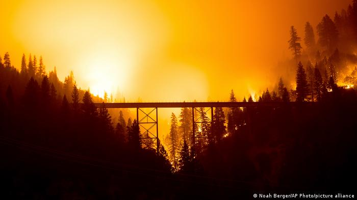 The glow of a wildfire in a forest with a bridge
