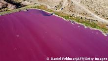 Argentinien I Pinke Lagune in Chubut