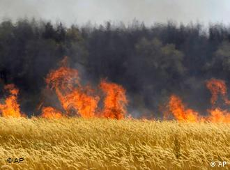 Cereal field on fire