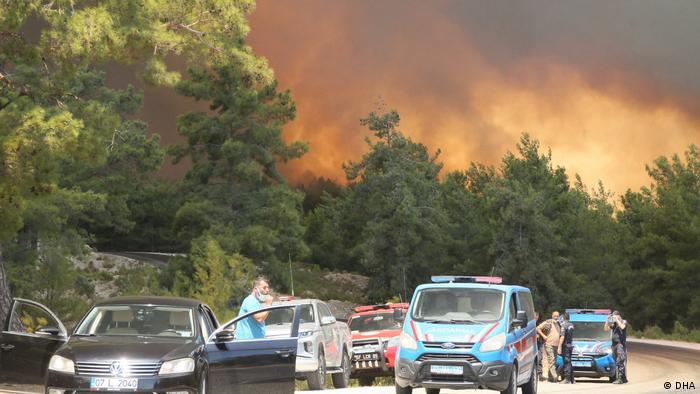 Боротьбу з вогнем ведуть сотні людей